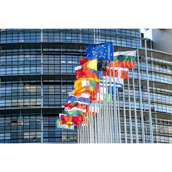 Europapolitik in Straßburg