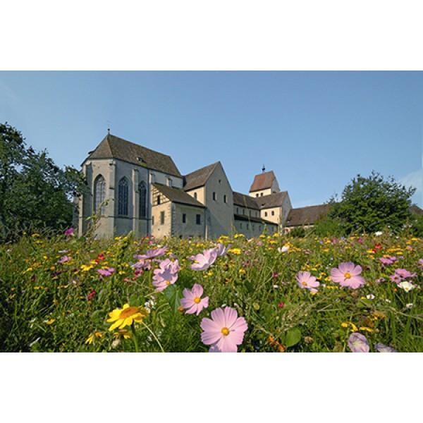 Insel Reichenau, Stadtbummel Konstanz und Katamaranfahrt